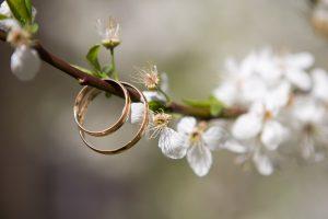 2 cincin, ranting pohon. bunga