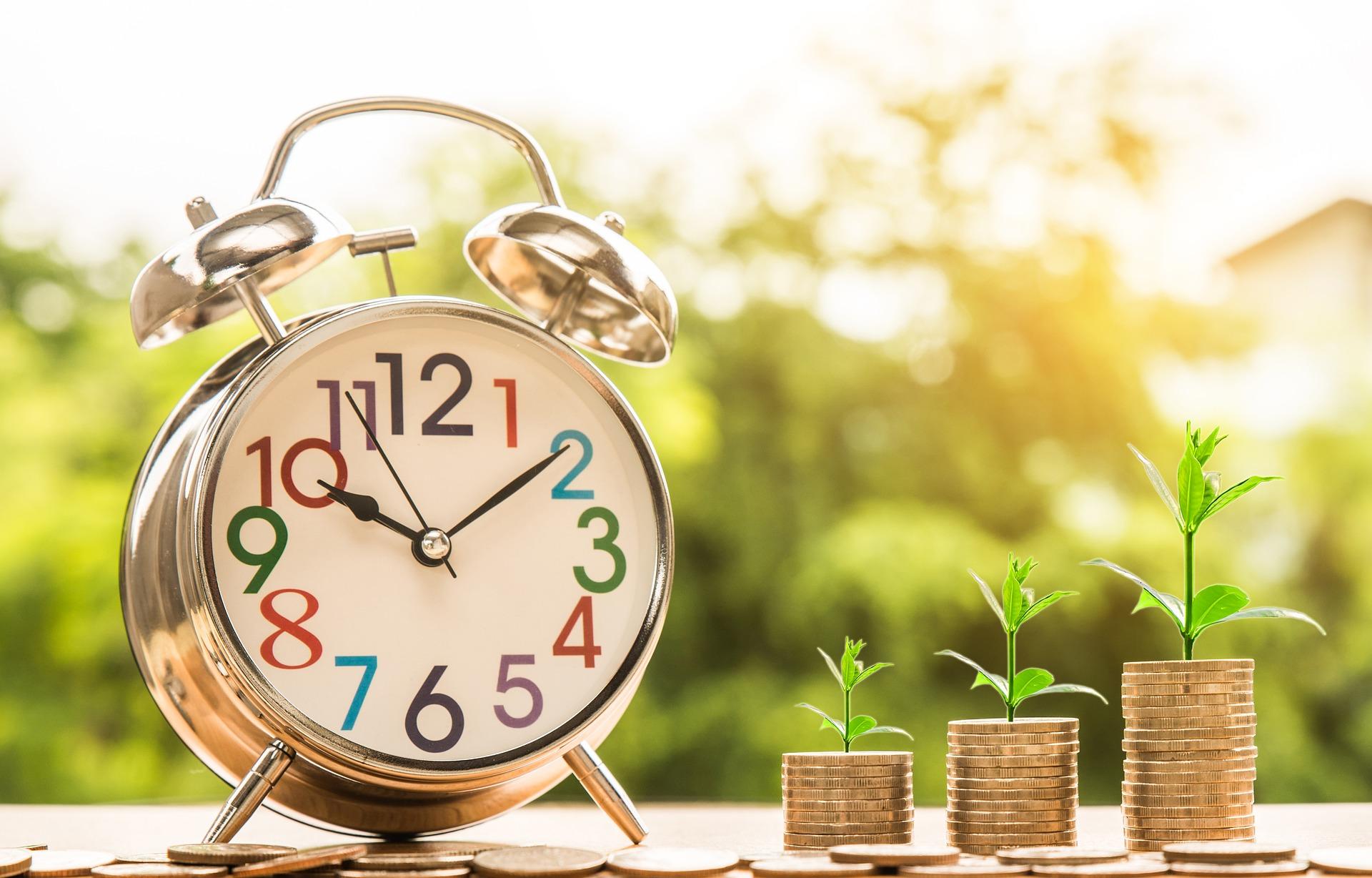 uang, jam, akuntansi, tanaman