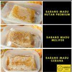 jual sarang madu murni asli